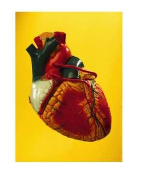 World Heart Day, Be A Heart Hero: Small Changes, Bigger Impacts